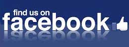 The Neson Family on Facebook